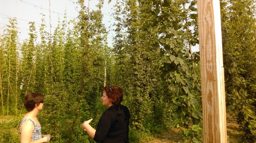Liz regales us with stories of hops gone by.